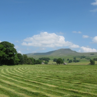 From the campsite to Penyghent hill and back. Barefoot all the way... sounds like fun!